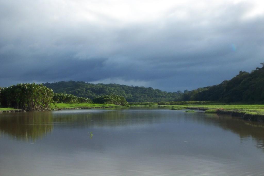 Guyane, photo réserve Marais de Kaw