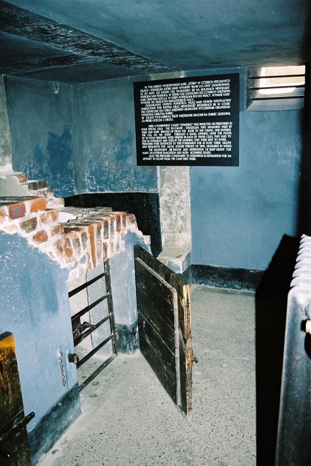 Auschwitz 1, cellule