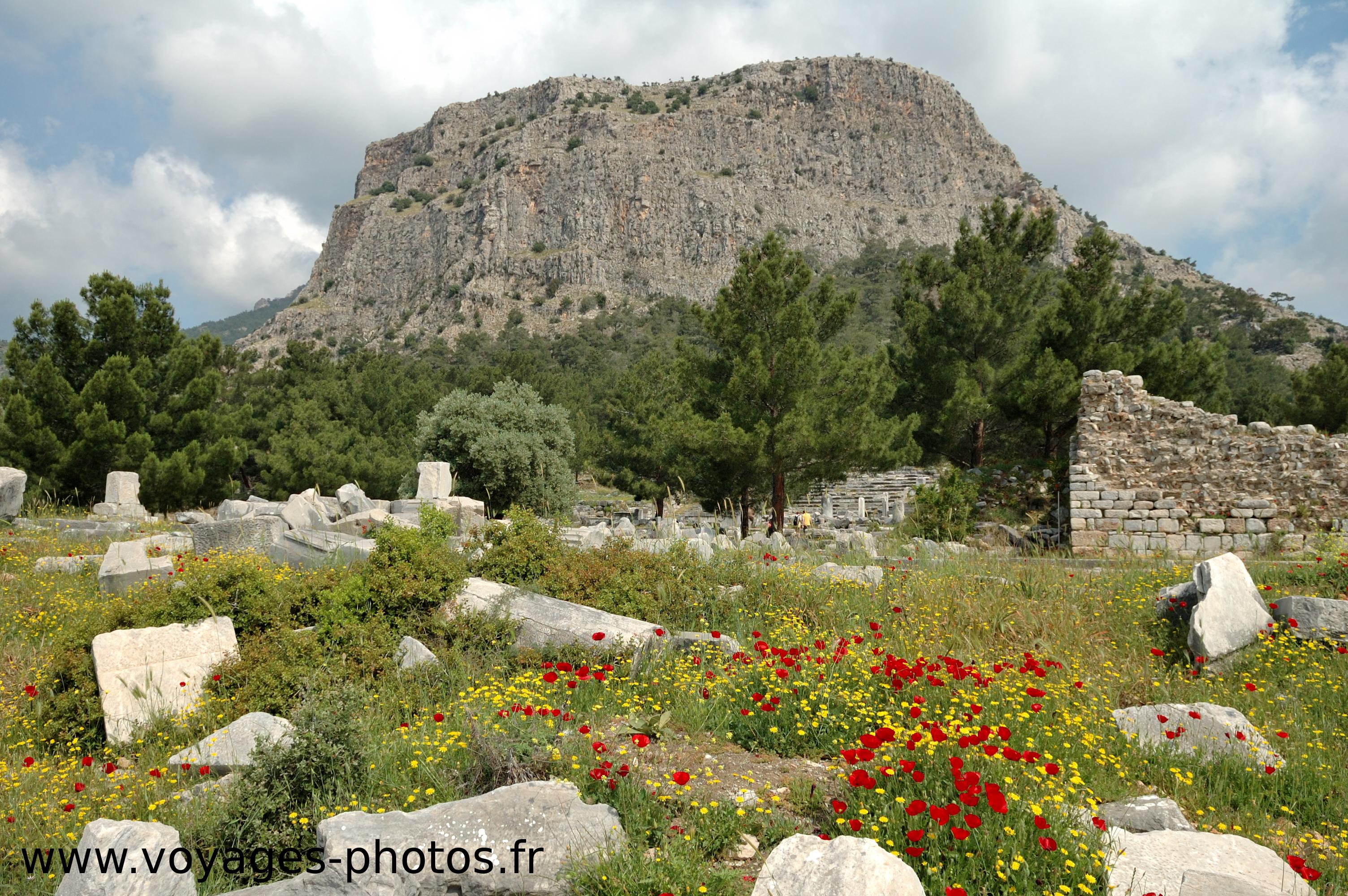 Turquie, ruines de Priène